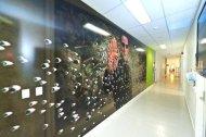 Giant Wall Image Hallway